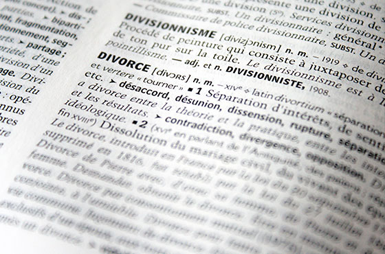 Cottet-bretonnier-navarrete-divorce-texte